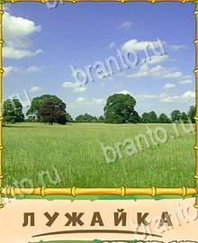 Ptiсa-govorun-111